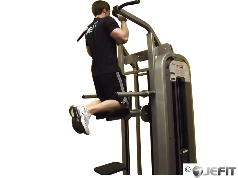 Machine Assisted Hammer Grip Pull Up - Exercise Database ...