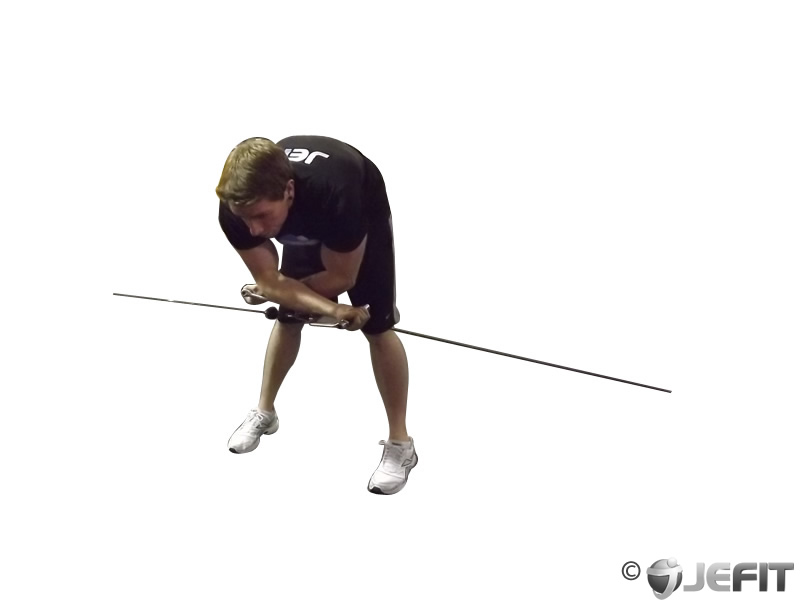 Bent Over Low Pulley Lateral