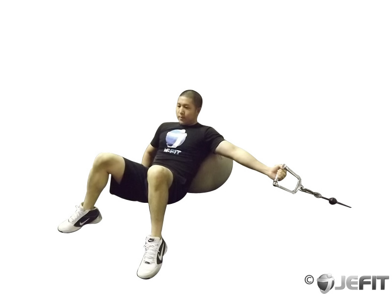 One Arm Incline Cable Fly on Exercise Ball