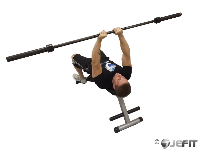 the gallery for gt lying tricep press