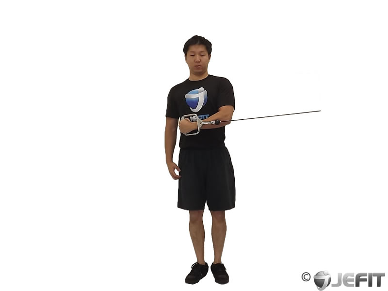 Cable Internal Rotation Exercise Database Jefit Best