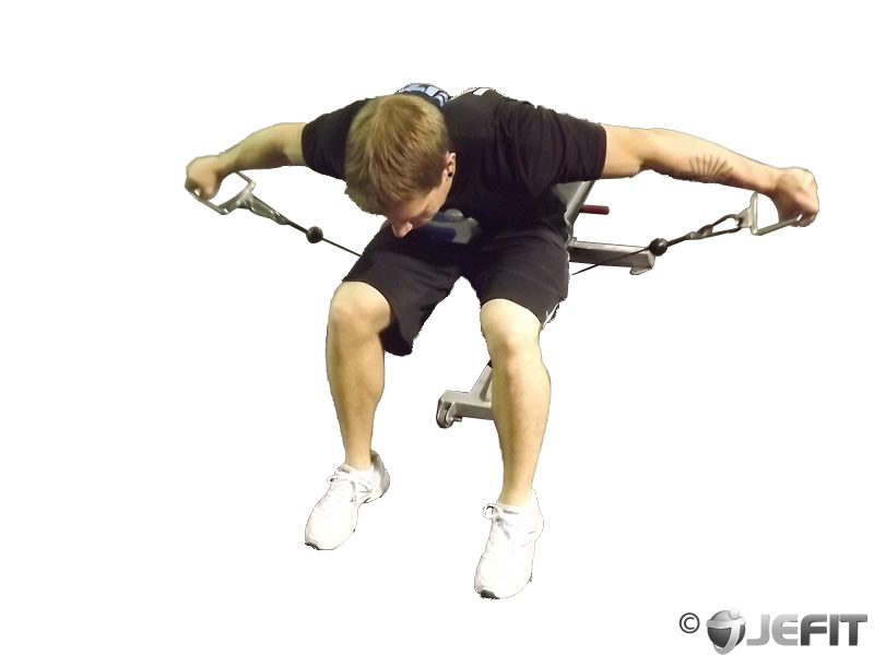cable rear lateral raise exercise database jefit
