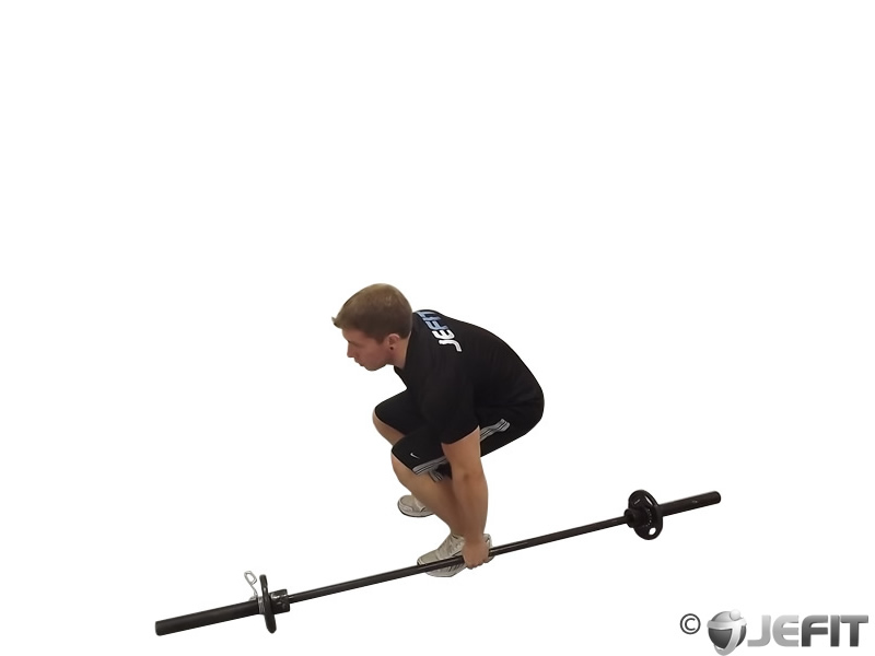 Barbell One Arm Side Deadlift