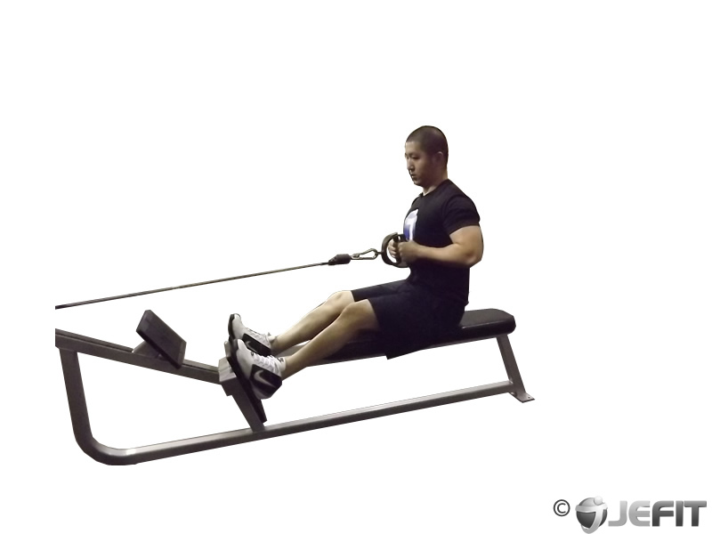 Cable Seated Row - Exercise Database | Jefit - Best ...