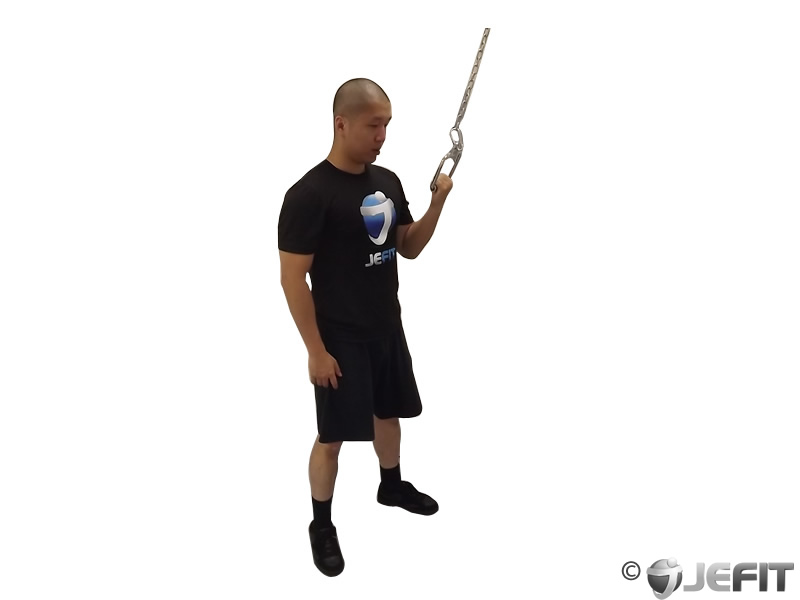 Cable One Arm Tricep Extension Exercise Database Jefit