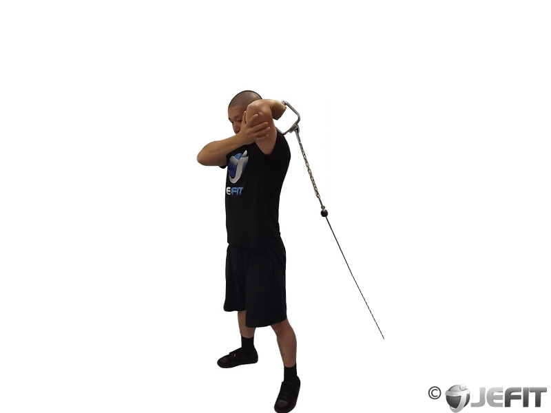 Standing One Arm Low-Pulley Triceps Extension
