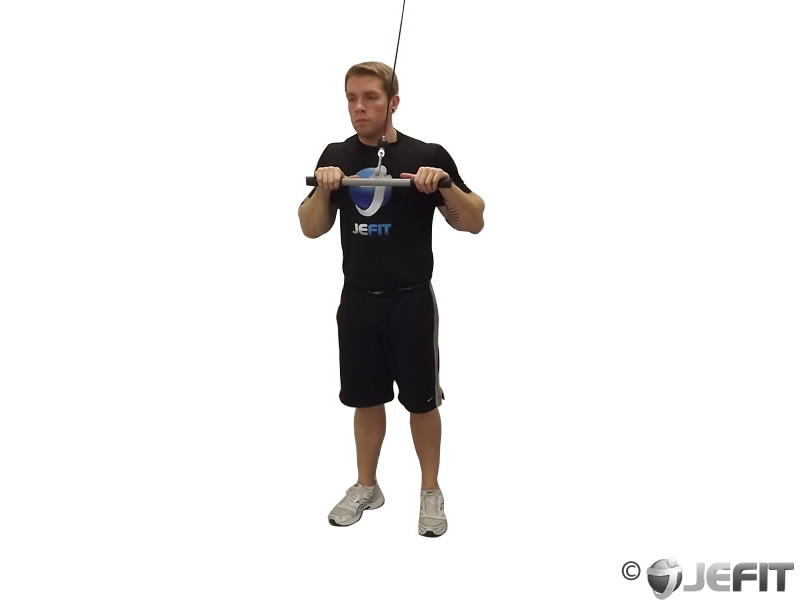 Cable Rope Triceps Pushdown Exercise Database Jefit