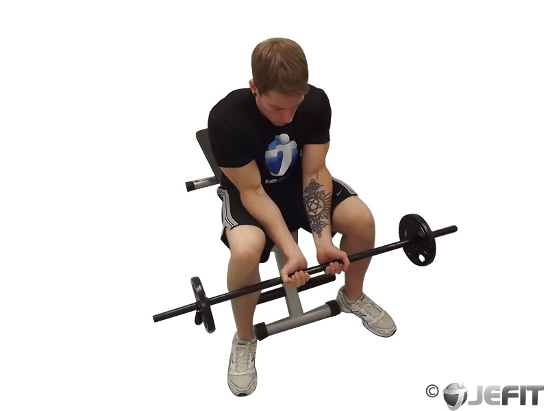 Ez Bar Seated Close Grip Concentration Curl Exercise Database Jefit Best Android And Iphone Workout Fitness Bodybuilding