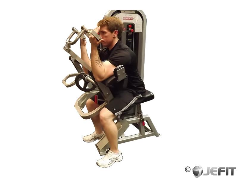 Preacher Curl Machine - Exercise Database | Jefit - Best ...