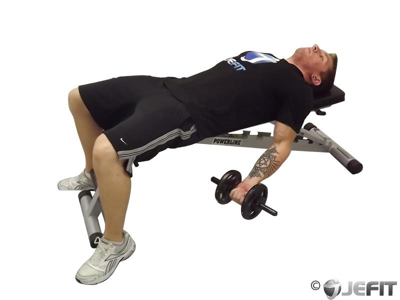 Dumbbell Lying Supine Biceps Curl Exercise Database