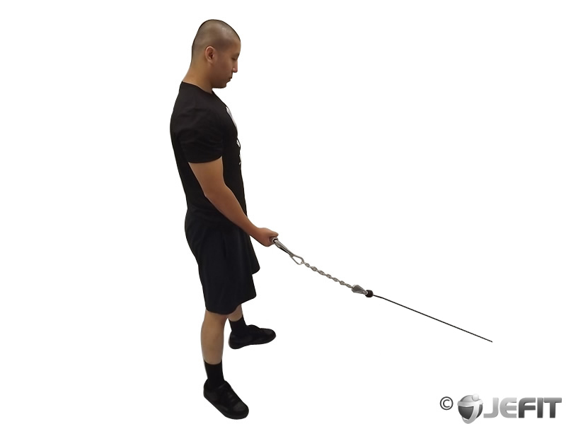 Cable standing one arm bicep curl exercise database for Floor underhand cable fly
