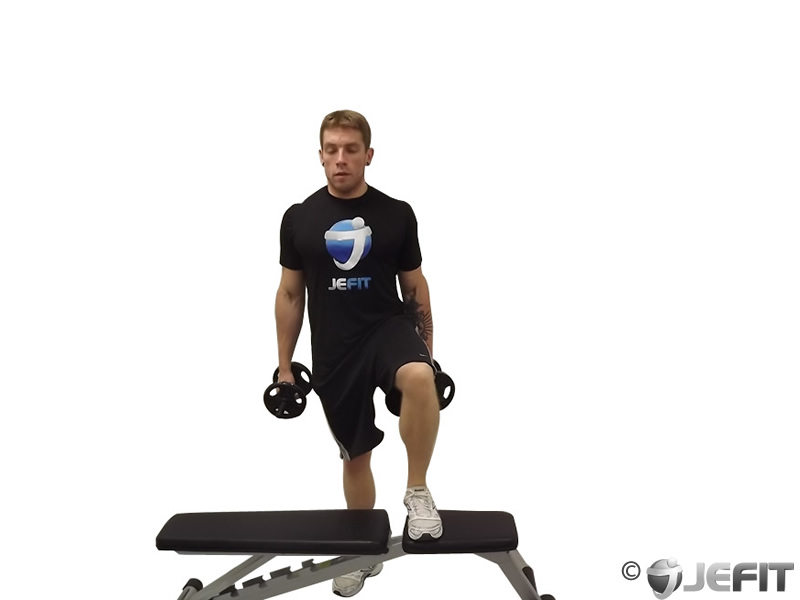 Dumbbell Step Up Single Leg Balance with Bicep Curl