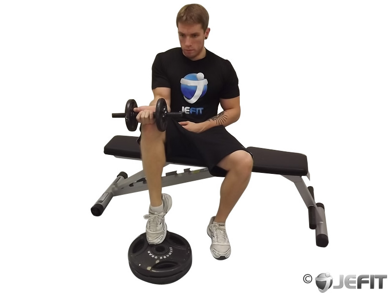 single leg squats with dumbbells