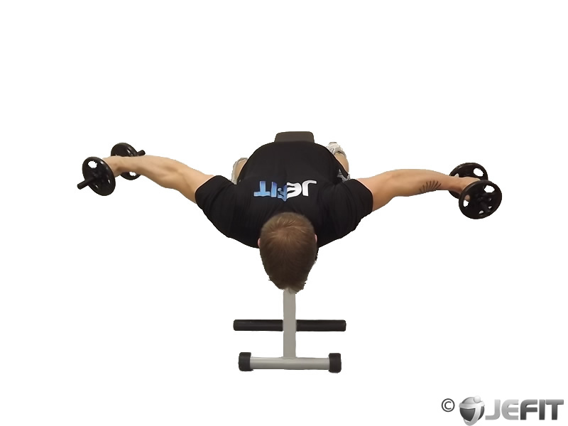 Dumbbell Lying Rear Lateral Raise - Exercise Database ...