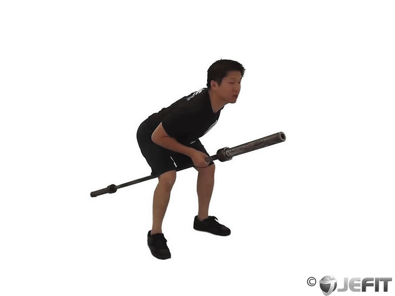Barbell Bent One Arm Row