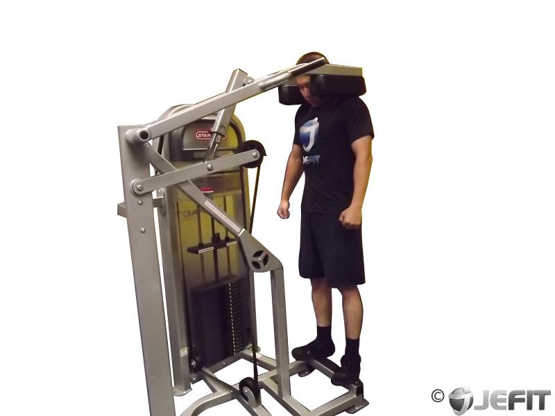 calf machine shoulder shrug exercise database jefit