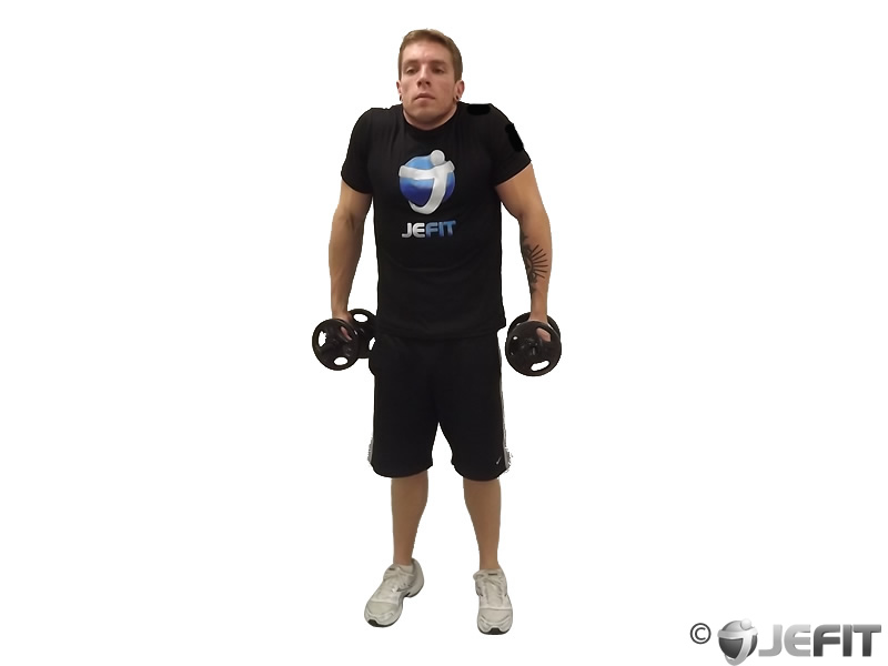 Dumbbell Shoulder Shrug