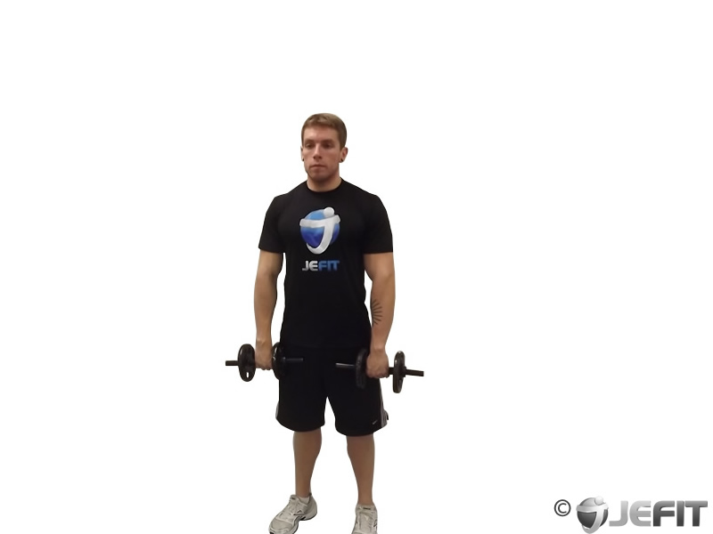 Dumbbell Standing Straight Arm Front Delt Raise Above Head