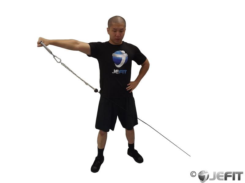 Shoulders (deltoids, traps, Neck, trapezius) Exercise Database ...