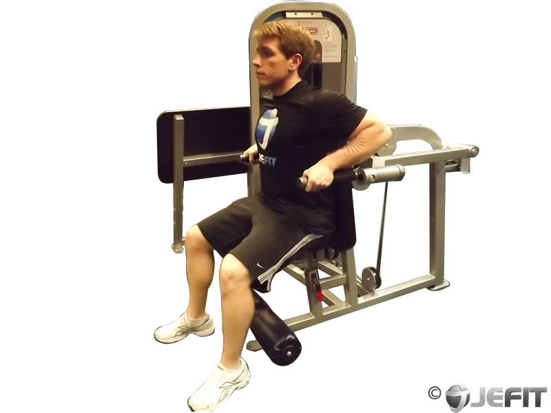 Dip Machine Exercise Database Jefit Best Android And