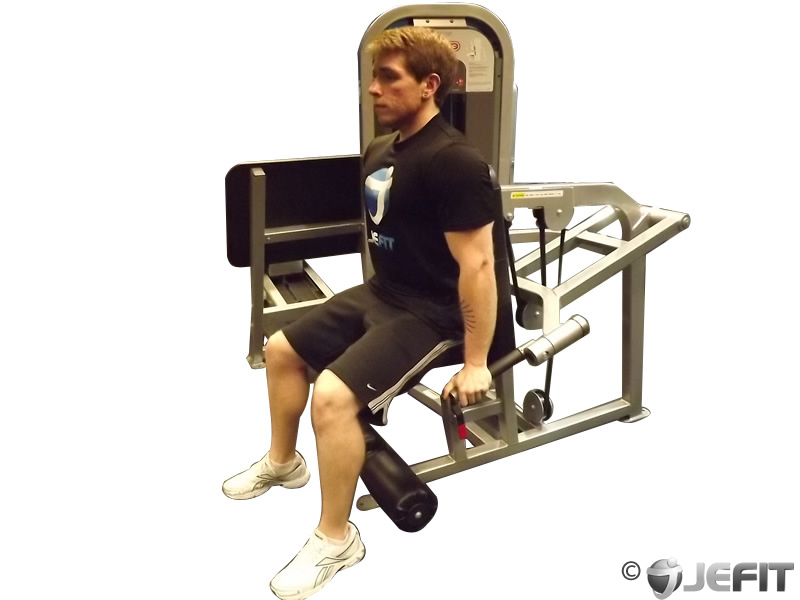 Dip Machine - Exercise Database | Jefit - Best Android and ...