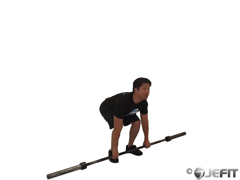 Barbell Clean Pull