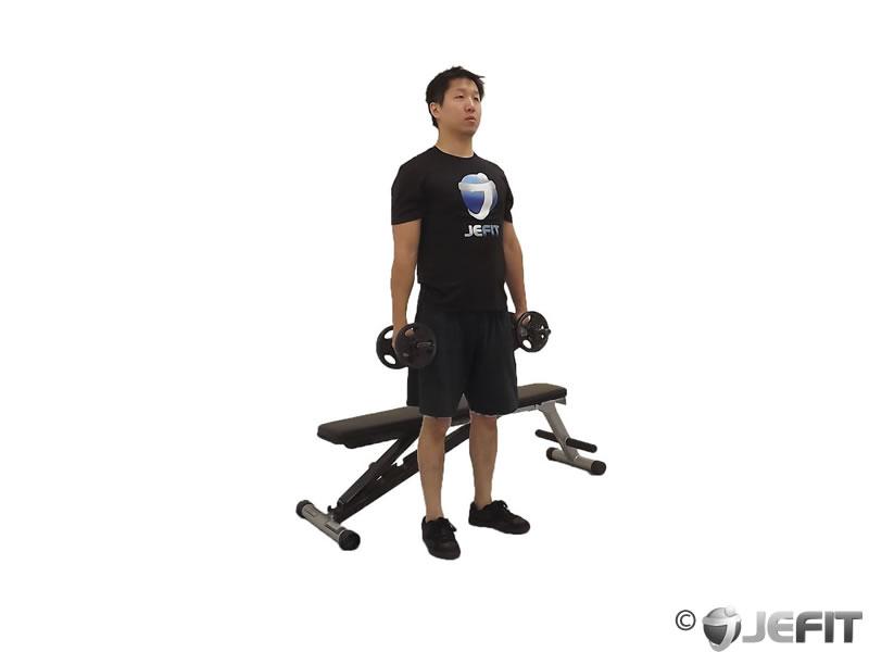 Superb Dumbbell Squat To A Bench Exercise Database Jefit Best Lamtechconsult Wood Chair Design Ideas Lamtechconsultcom