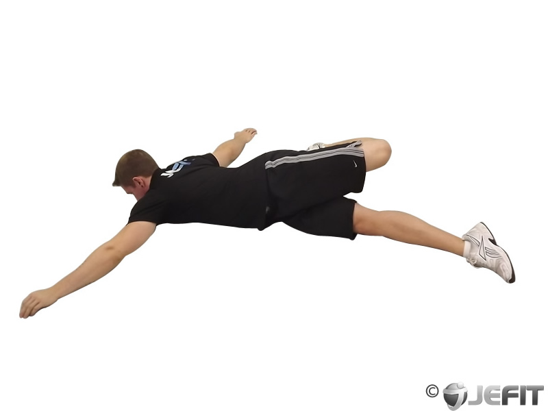 Scorpion Exercise Database Jefit Best Android And