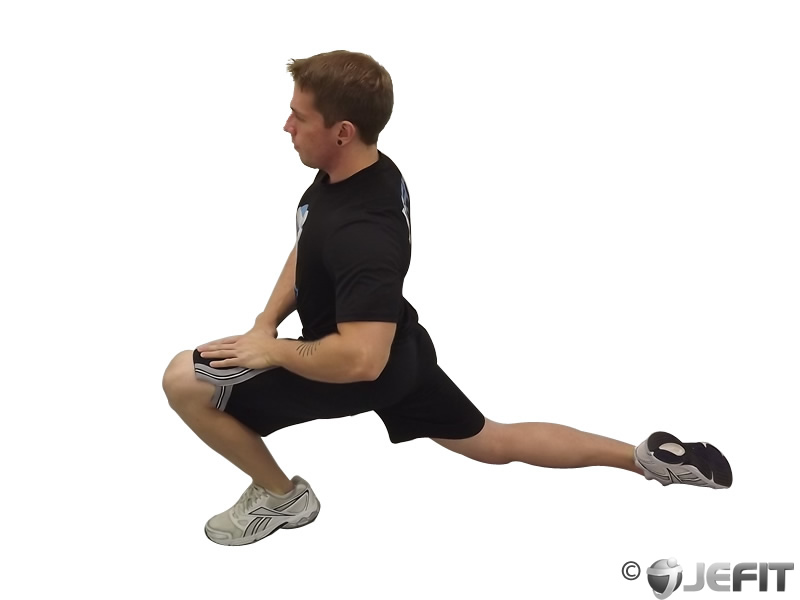 Dorsiflexion Exercise Database Jefit Best Android