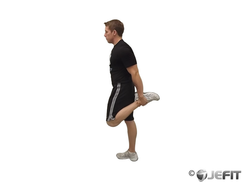 Standing Quadriceps Stretch - Exercise Database | Jefit - Best Android and  iPhone Workout, Fitness, Exercise and Bodybuilding App | Best Workout  Tracking Software