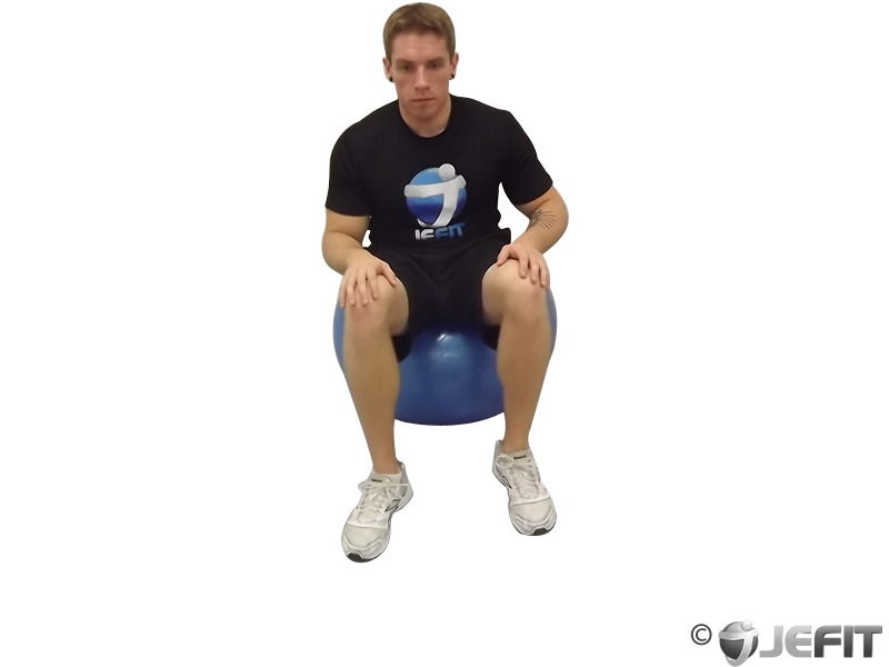 Exercise Ball Seated Hamstring Stretch