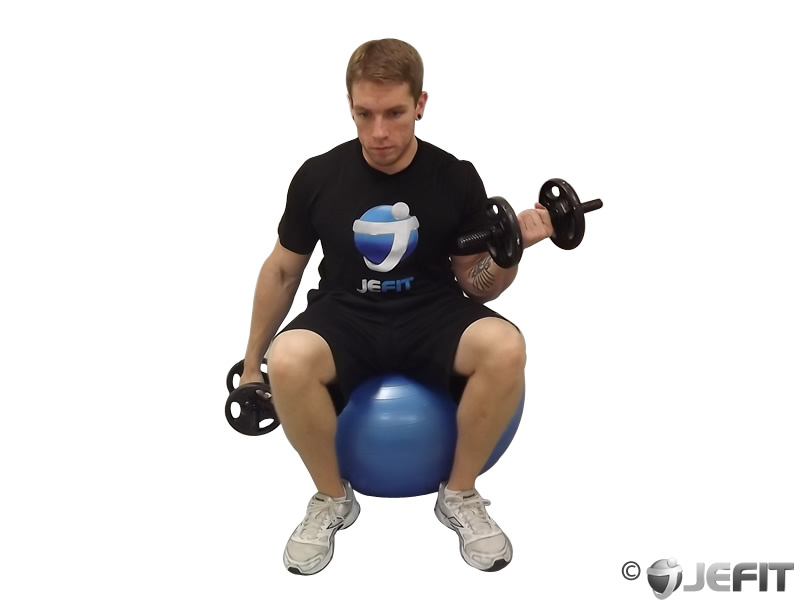 Dumbbell One Arm Seated Bicep Curl on Exercise Ball