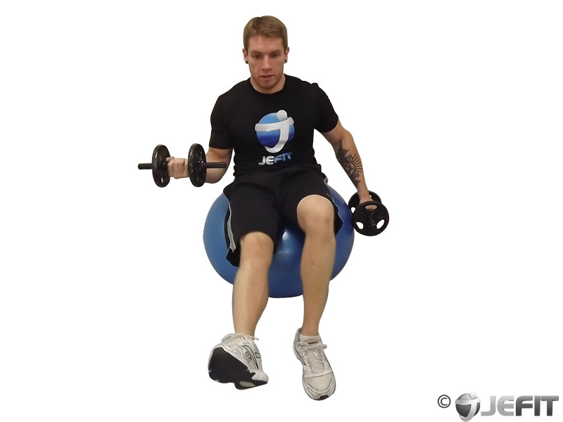 Dumbbell Alternating Seated Bicep Curl on Exercise Ball