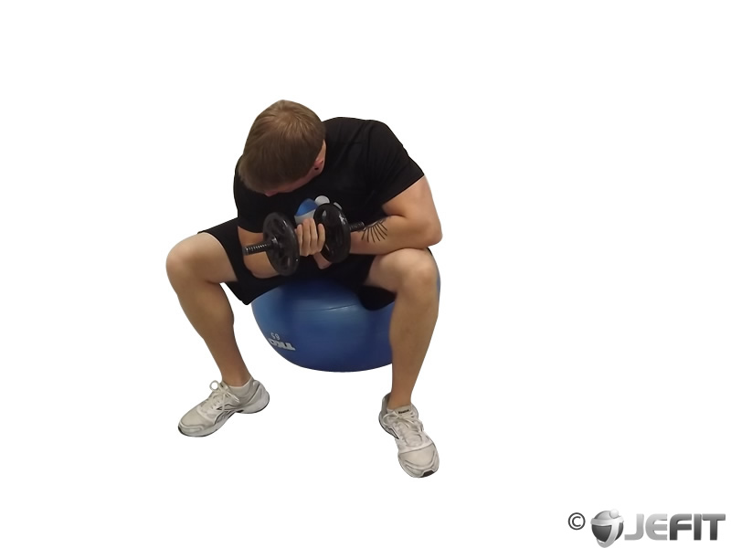 Dumbbell Seated Concentration Curl on Exercise Ball