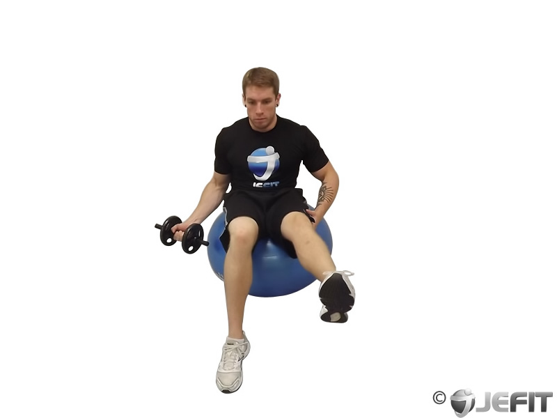 Dumbbell Seated One Arm One Leg Bicep Curl on Exercise Ball