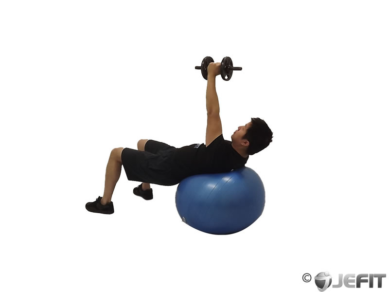 Dumbbell One Arm Fly on Exercise Ball