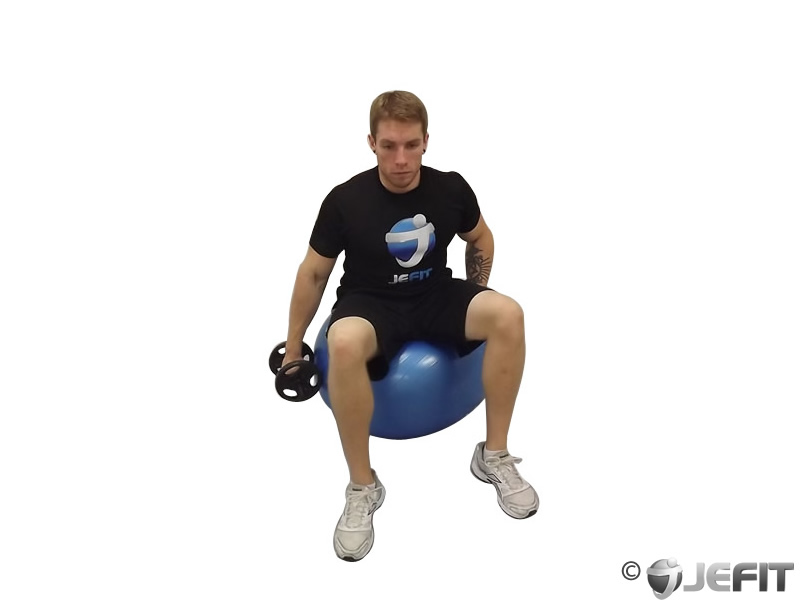 Dumbbell One Arm Lateral Raise on Exercise Ball