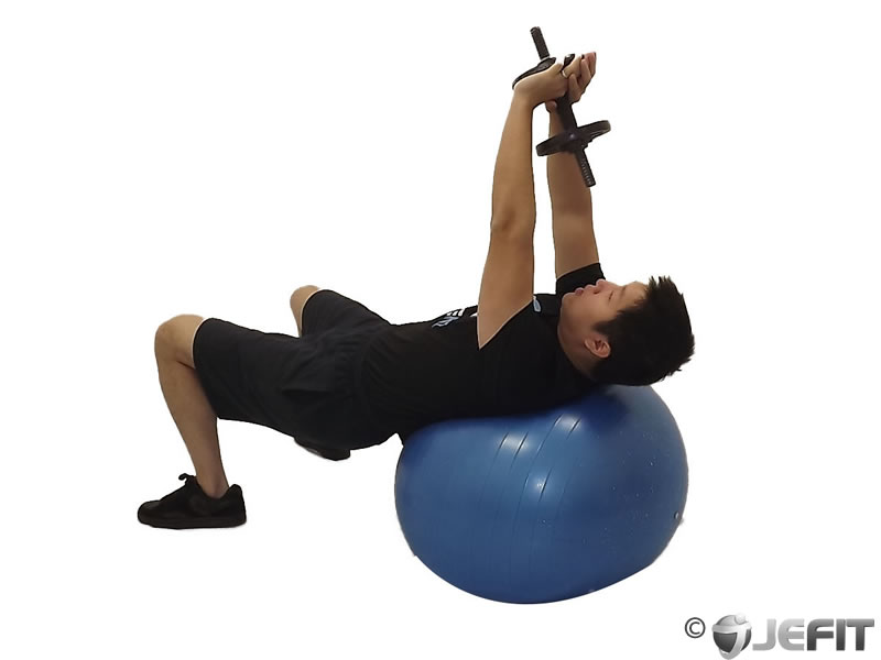 Dumbbell Lying Pullover on Exercise Ball