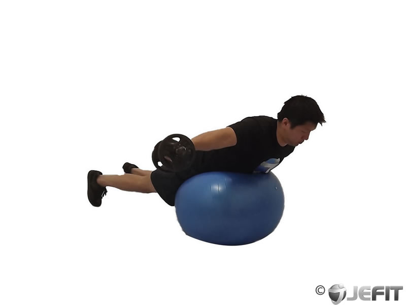 Dumbbell One Arm Rear Delt Fly on Exercise Ball