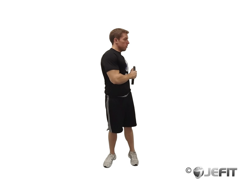 Weight Plate Oblique Twists