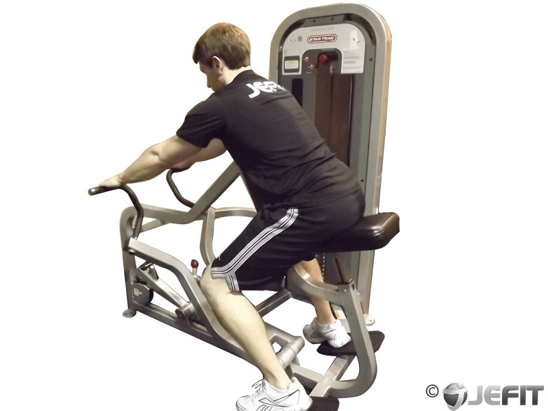 Seated Machine Row Exercise Database Jefit Best
