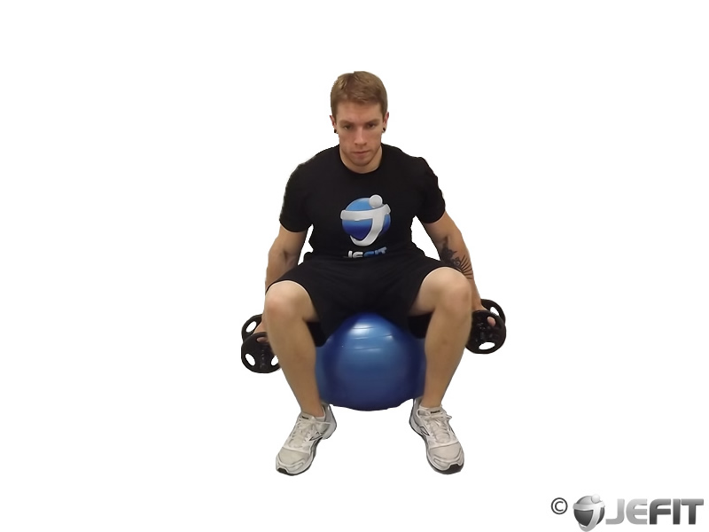 Dumbbell Hammer Curl on Exercise Ball