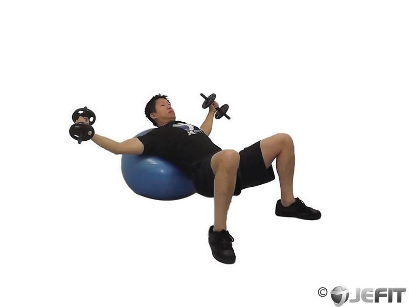 Dumbbell Incline Fly on Exercise Ball - Exercise Database