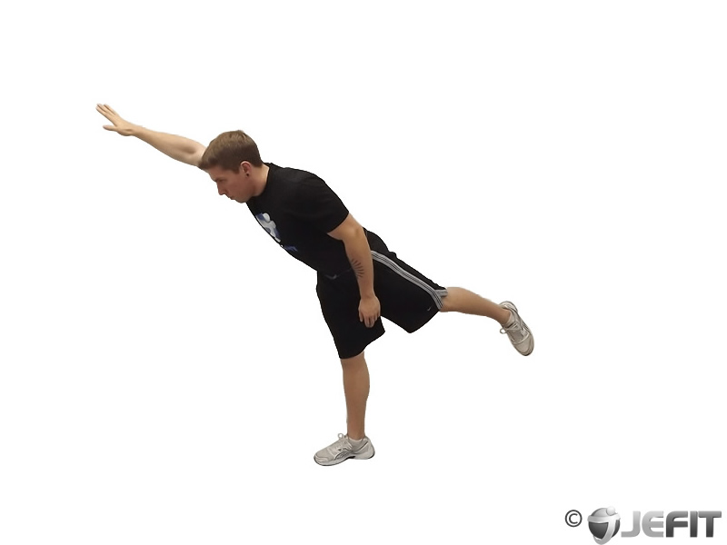 Standing One Arm One Leg Opposite Reach Exercise