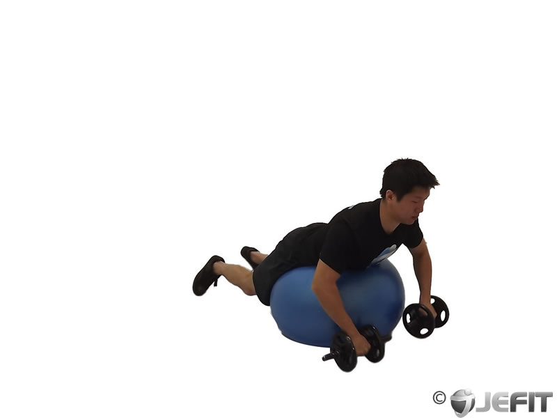 Dumbbell Prone Rear Delt Row on Exercise Ball