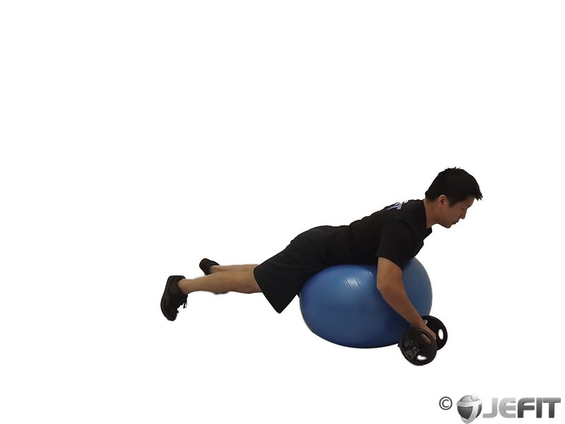 Dumbbell Prone One Arm Rear Delt Row on Exercise Ball