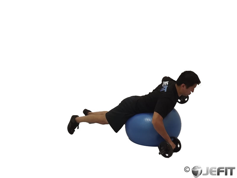 Dumbbell Prone Alternating Rear Delt Row on Exercise Ball