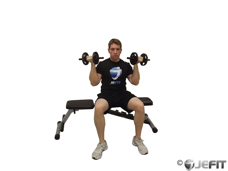 Dumbbell Seated Reverse Grip Shoulder Press