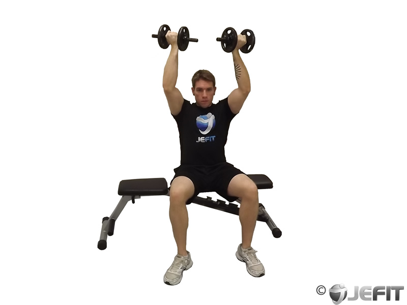 Seated Reverse Dumbbell Fly Dumbbell Seated Reverse Grip