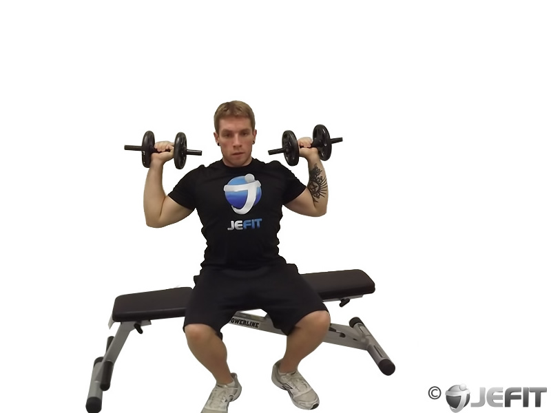 Dumbbell One Arm Seated Shoulder Press